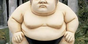 Sumo-Sized Perspective
