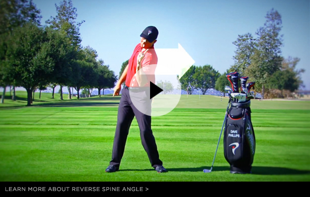 The Golfer's Guide to Lower Back Pain – Part 1 | Article | TPI